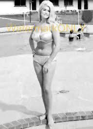 "LINDA VAUGHN ""MISS Hurst Golden Shifter"" '60s SEXY Bikini ""Poolside"" PHOTO!  #(1) - $8.99 | PicClick"