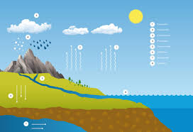 the water cycle watersaving com water cycle