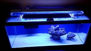 how to setup a 20 gallon nano reef tank day 2 finnex ray2 db led light you