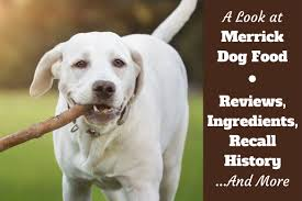 a look at merrick dog food reviews ings and recall history written beside a yellow