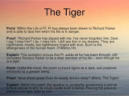 life of pi and the tyger compare and contrast essay 12
