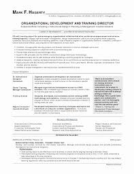 New Resume Format Delectable Format Of A Resume New Beautiful Simple Sample Resume Format For