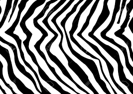 Zebra Patterns Classy Abstract Zebra Pattern Zebra Skin Simulation Royalty Free Cliparts