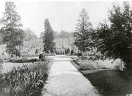 flower garden walk with cornfield beyond 1909