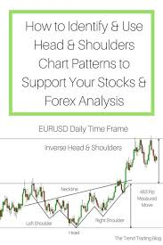 Forex Information Forex Young Trader Forex 99 Accuracy