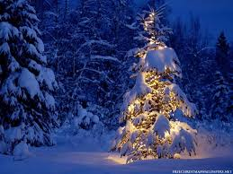 Snowy Christmas Desktop Background Wallpapers 14565 - Amazing ...