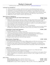 Junior Financial Analyst Resume Sample Financial Analyst Resume
