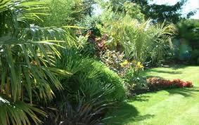Small Picture Mediterranean garden ideas