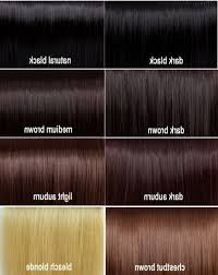 Superb Brown Hair Color Chart Equipstudio Club
