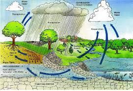 Rain Water Harvesting Recycling Consultancy Rainwater