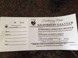 The Kildorrerry Gaa Fundraising Draw Has A Very Definite Idea Of