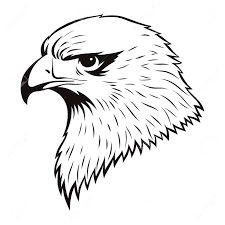 Simple eagle drawings how to