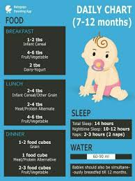 Diet Chart For 10 Months Old Baby