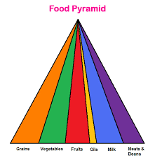 blank food pyramid. Unique Food Kids Crash Diet  Blank Food Pyramid Pictures Of Asteroids Printable For Blank Food Pyramid I