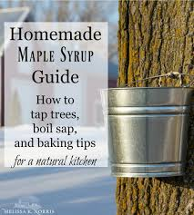 Maple Sap To Syrup Conversion Chart Homemade Maple Syrup Guide How To Tap Make Syrup Baking