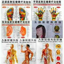Leg Acupressure Points Chart Whole Body English Acupuncture Meridian Acupressure Points Poster Chart Wall Map