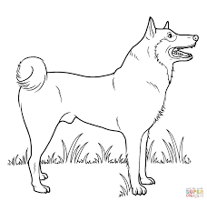 Downloads Coloring Pages Of A Dog 78 For Your For Kids With
