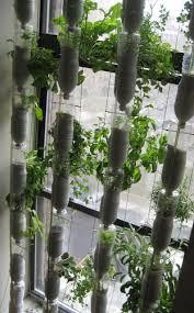 great idea indoor window garden