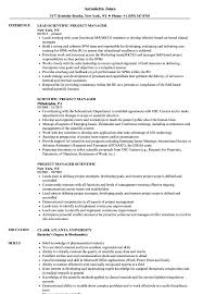 Project Resume Scientific Project Manager Resume Samples Velvet Jobs 15