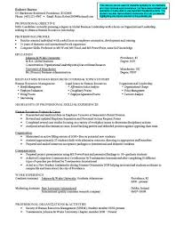 finance major resume 10 finance resume tips writing resume sle