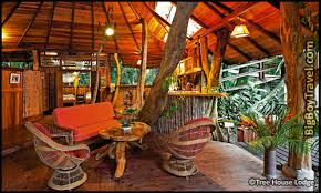 Greatest Treehouses To Rent On Airbnb  ThrillistCoolest Tree Houses