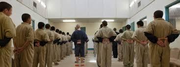 juvenile delinquency essay expert essay writers juvenile delinquency essay