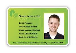 Leaves Castlemount - Limited Green