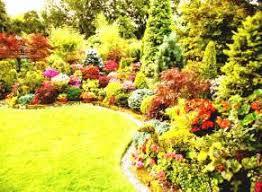 Small Picture Perennial Garden Ideas perennial flower garden design ideas