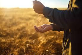 Bildergebnis für fachkraft für agrarservice