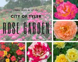 come visit us at the tyler rose garden