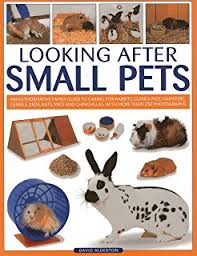 Image result for caring for small pets
