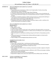 Resume For Marketing Jobs Marketing Manager Italy Resume Samples Velvet Jobs 7