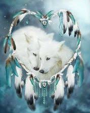 native american dreamcatcher wolf. Native American Dream Catcher Wolves Of Love Borderless Matte Art With Dreamcatcher Wolf