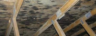 mold in attic. Perfect Attic One Of The Most Common Claims That We Have Investigated Is U201csuddenu201d  Appearance Moisture Staining Or Mold Growth In An Attic On Ceiling A  And Mold In Attic H