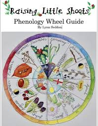 Phenology Chart Phenology Wheel Nature Journal Nature Study Nature