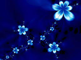 blue flowers wallpapers and pictures 116 items page 1 of 5
