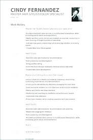 Examples Of Resumes Key Qualifications Resume From Skills And ...