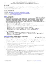 project manager resume putting excel skills software sample for  infrastructure architect summary samples free outstanding examples