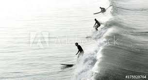 surfers in california wall mural