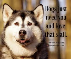 Quotes About Dogs Love Simple 48 Dog Quotes For People Who Love Dogs SayingImages