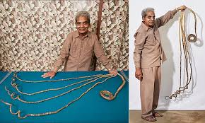 guinness world records holder shridhar chillal to dedicate longest fingernails to a museum daily mail