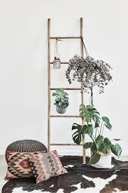 Boho Dream Eine Holzleiter Mit Pflanzen Und Blumentöpfen