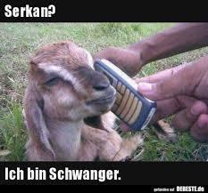 Schwarzerhumoristtoll Hash Tags Deskgram