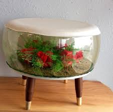 terrarium furniture. monthly sale all furniture and framed art 20 off orginal price 125 terrarium