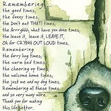 Sympathy Card Pet Loss Loss Of A Pet Dog Condolence Sympathy Card Remembering The Good