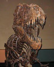 Wikijunior:<b>Dinosaurs</b>/<b>Tyrannosaurus</b> - Wikibooks, open books for an ...