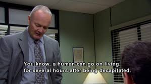 Creed Quotes Unique 48 Times Creed Bratton Was The Best Character On The Office