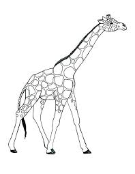 Giraffe Printable Template Giraffe Cut Out Template Sharkk