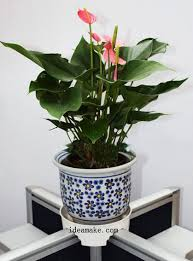 office flower pots. Office Flower Pot Stand,Patented Design - Buy Stand,Office Stand Product On Alibaba.com Pots L