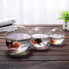 Decorative Glass Bowls And Vases 100 New Clear Glass Bowl Vase Fish Tank Succulents Terrarium 2